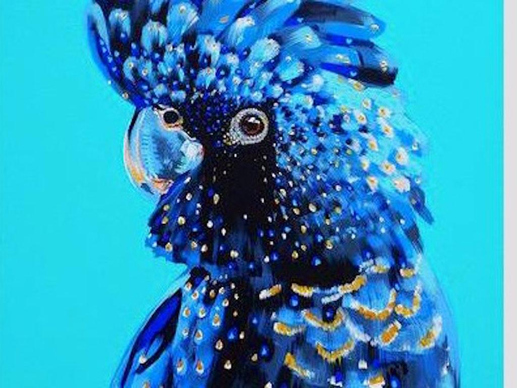 Blue Cocky