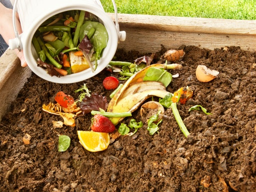 Healthy Productive Compost and Worms at Bulleen Art and Garden (Photo Credit to Homestructions)