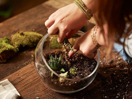 Botaniculture Terrarium Workshop with Horticulturist Mark Phillips at Belinda Janes Gifts (Photo Credit to Gardenista)